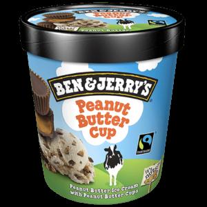 55402 Ben & Jerry's Pint Peanut Butter Cup